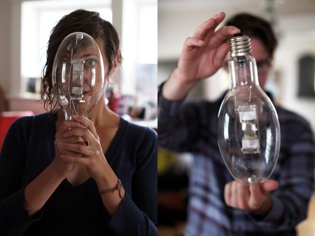 bulbs3