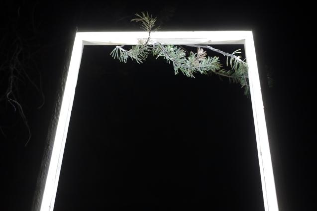 10 Deep Dark Finished Installation